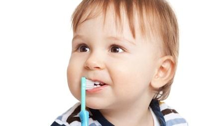 生後11ヶ月 歯が生える 生えない 歯磨き