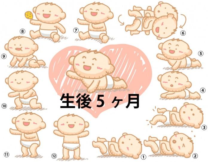 生後5ヶ月赤ちゃんの成長と育児で知っておきたいこと