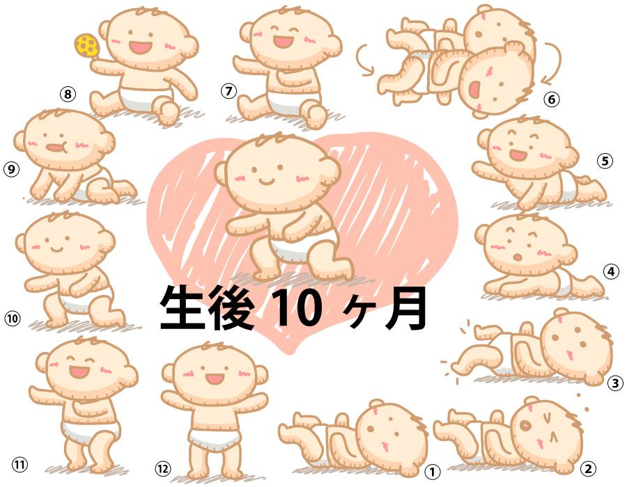 生後 10 ヶ月 生活 リズム