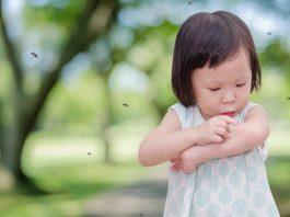 赤ちゃんの虫除け対策!スプレーや蚊取り線香は大丈夫?