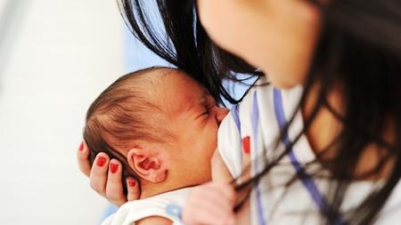 初乳の成分について