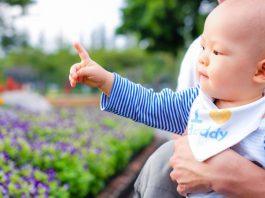 赤ちゃんの指差しについて知っておきたいこと いつから 練習方法 など