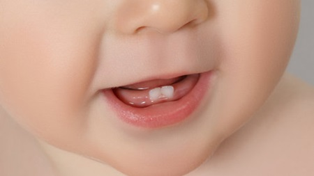 乳歯が生えてくる時期