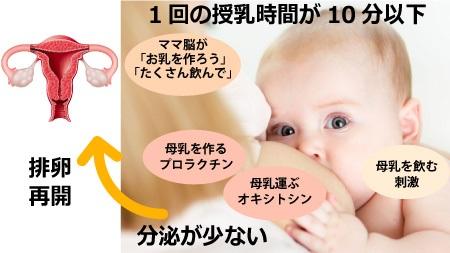 授乳の間隔