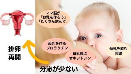 授乳量の変化について
